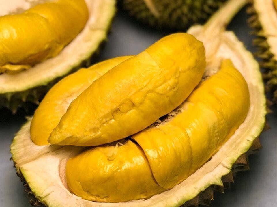 eating durian fruit