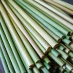 grass-straws