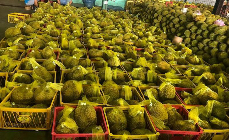 where to buy durian fruit