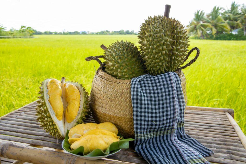 trái sầu riêng có ngon không