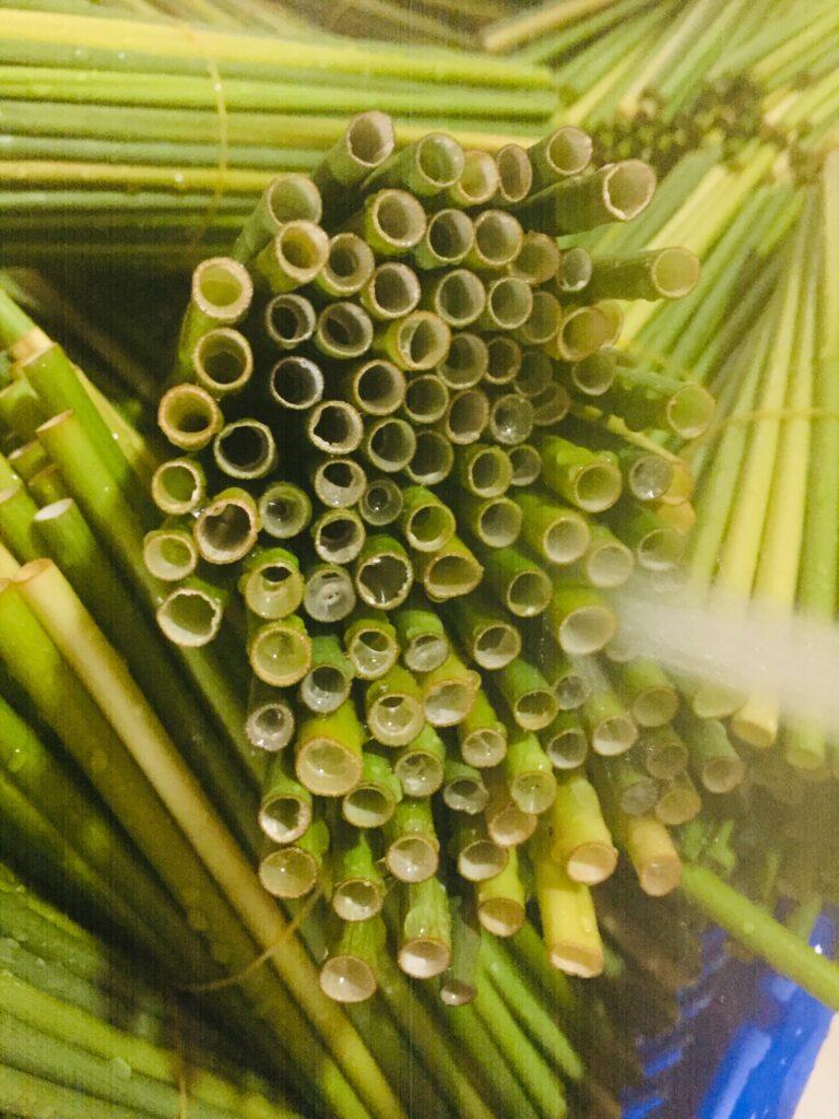 ống hút cỏ tươi
